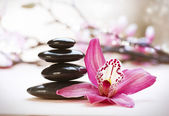 Spa Stones and orchid flower — Stock Photo