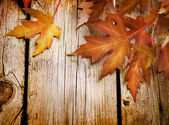 Foglie d'autunno sopra spazio copia background.with in legno — Foto Stock