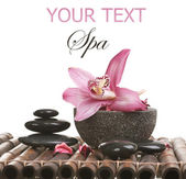 Spa Stone Massage — Stock Photo