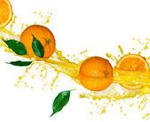 Frutas laranja e suco de espirrar em movimento — Foto Stock