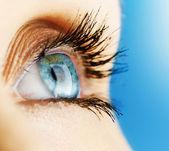 Beautiful Woman Eye — Stock Photo