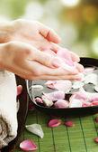 Mooie vrouw de handen. manicure concept — Stockfoto