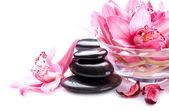 Spa Stones Massage — Stock Photo