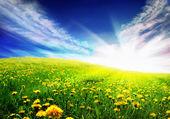Bahar peyzaj — Stok fotoğraf