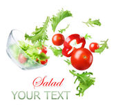 Healthy Vegetable Salad. Dieting Concept — Stock Photo