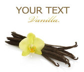 Vanilla Over White — Stock Photo
