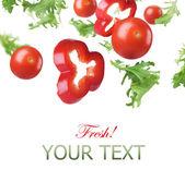 Fresh Healthy Vegetables Border — Stock Photo