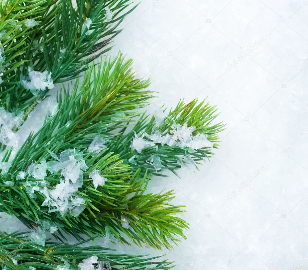 Christmas Tree over Snow. Winter Background  Stock Photo #10680815