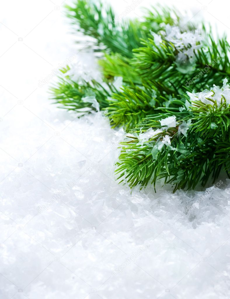Christmas Tree over Snow. Winter Background — Stock Photo #10680822