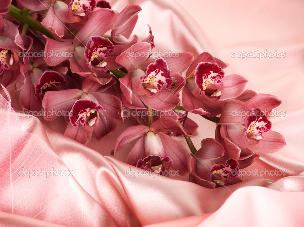 Silk And Orchids — Stock Photo #10682906