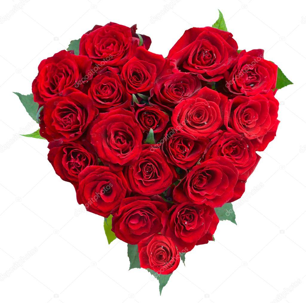 Wallpaper Love Rose Flower
