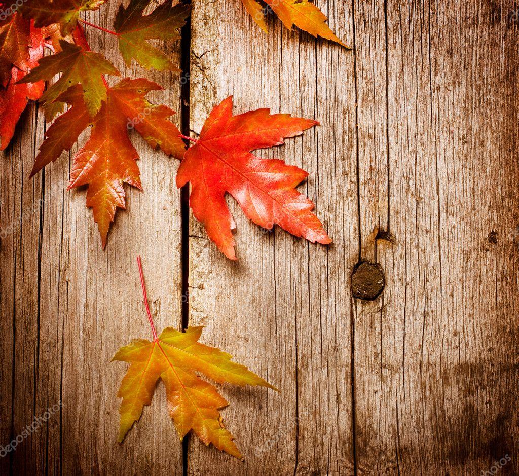 Autumn Leaves over wooden background.With copy space — Stock Photo #10687697