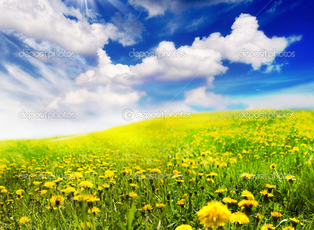 Spring Landscape Stock Photo Subbotina 10687919