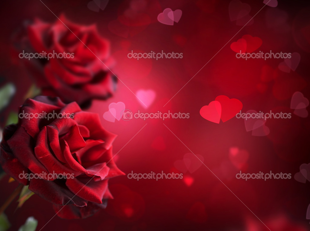 Valentine or Wedding Card. Roses and Hearts — Stock Photo #10688253