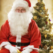 Stock Photo: Santa Claus Portrait