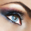Beautiful Woman's Eye. Makeup — Stock Photo #10747291