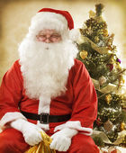 Santa Claus Portrait — Stockfoto