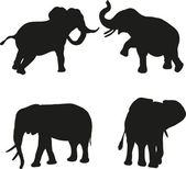 Silhouettes of elephants on a white background — Stock Vector