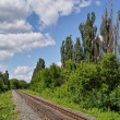 Railway in bright summer day — Stock Photo