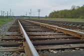 Railway line in evening — Stock Photo