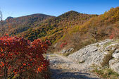 The trail in a beautiful autumn mountains — Stock Photo