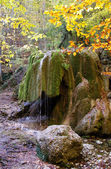 Beautiful waterfall in forest, autumn landscape — Stock Photo