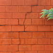 Painted cinder block wall — Stock Photo