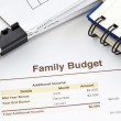 Stock Photo: Family Budget