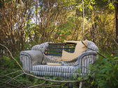 Abandoned loveseat — Stock Photo