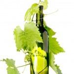 Wine bottle — Stock Photo