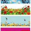Stock Vector: Bright summer banners