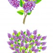Stock Vector: Lilac branch