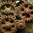 Gears from old mechanism — Stock Photo #9617854