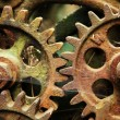 Gears from old mechanism — Stockfoto #9617937