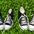 Canvas shoes, sneakers: chucks on the grass — Stock Photo