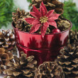 Stock Photo: Christmas Pine Cones