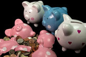 Broken Piggy Bank — Stock Photo