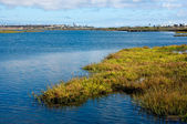 Bolsa Chica Wetlands — Stock Photo