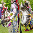 Royalty-Free Stock Photo: Pow Wow Dancers