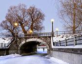 Winter Stone Bridge — Stock Photo