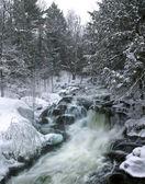 Winter Waterfalls — Stock Photo