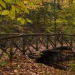 Log Bridge in Fall — Stock Photo