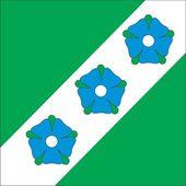 Abja vald flag — Stock Vector