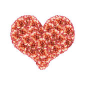 Orange Carnations Heart — Stock Photo