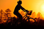Young woman riding a bicycle on a sunset background — Stock Photo
