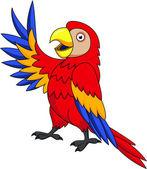 Macaw Bird Cartoon — Stock Vector