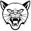 Panther Head — Stock Vector #10350311