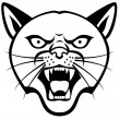 Panther Head — Stock Vector