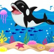 Stock Vector: Killer whale carton