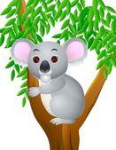 Koala Cartoon — Stock Vector